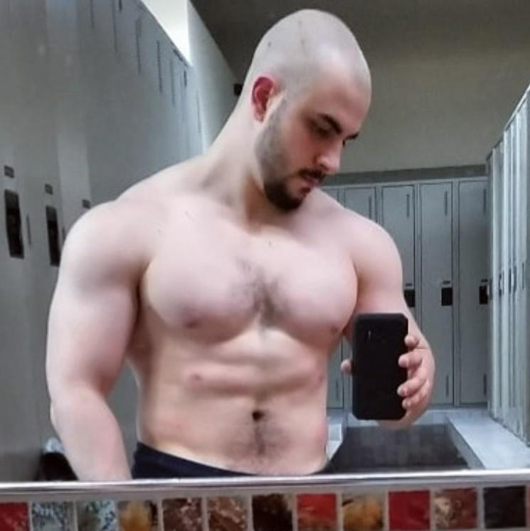 Giant muscle bear